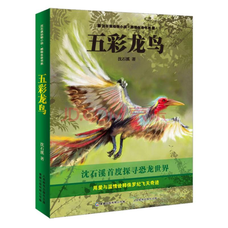 《沈石溪动物小说·感悟生命书系:五彩龙鸟》(沈石溪