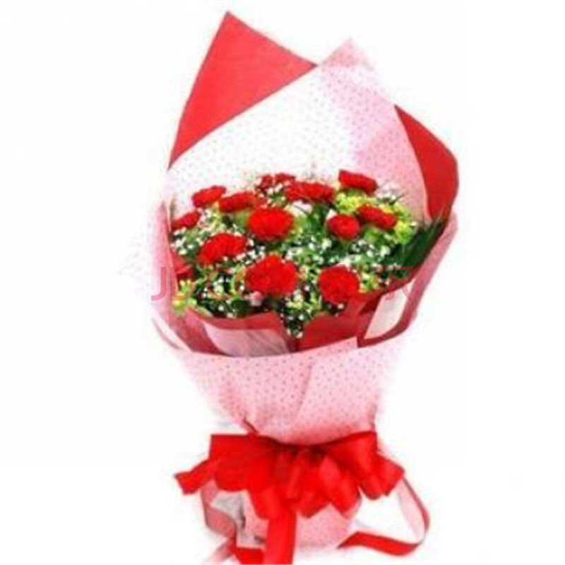 教师节鲜花 母亲节 12枝红色康乃馨