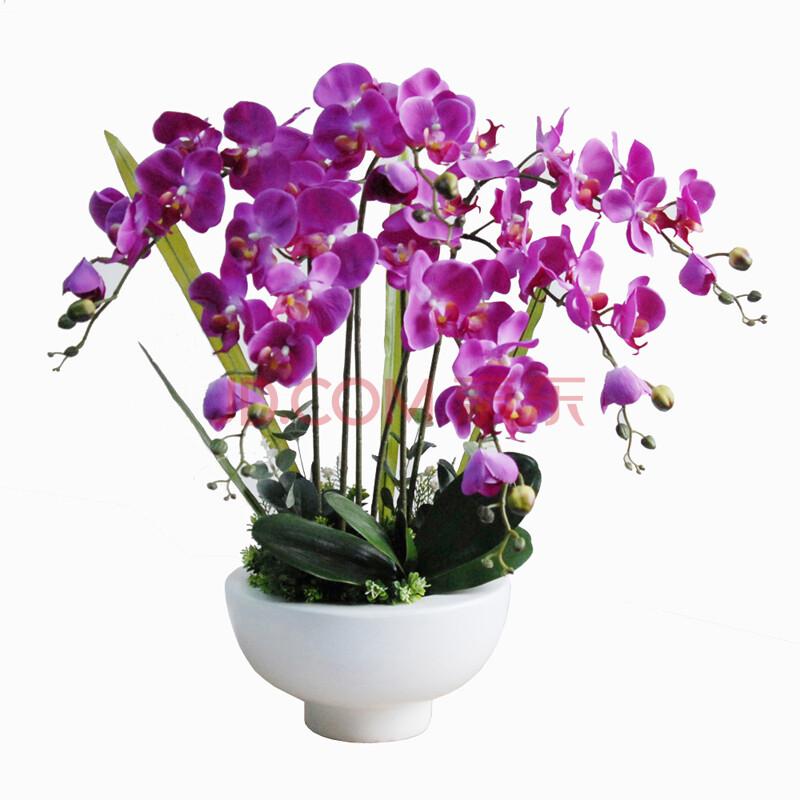 植物拼图手工制作图片