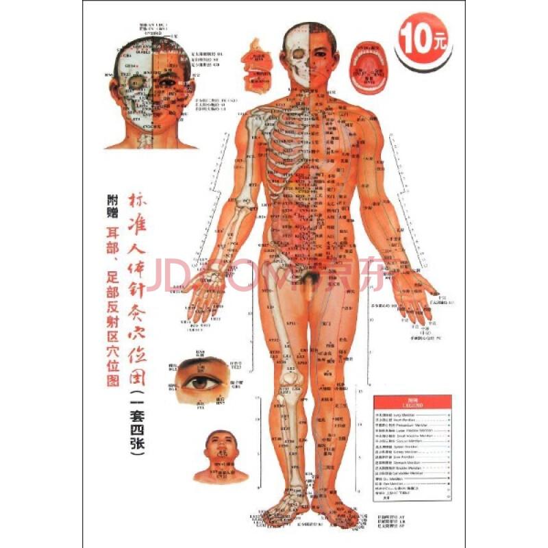 小孩胸前穴位_妇科艾灸穴位图3