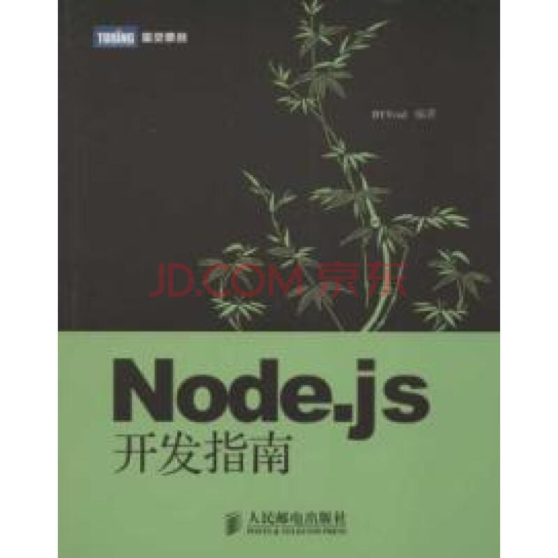 《Node.js开发指南》
