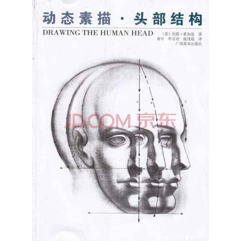 动态素描 头部结构 艺术 伯恩霍加思 正版图书