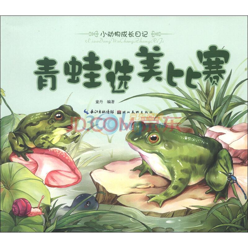 小动物成长日记:青蛙选美比赛
