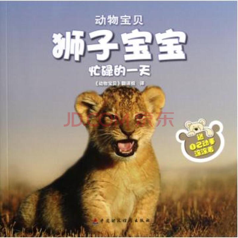 狮子宝宝忙碌的一天/动物宝贝