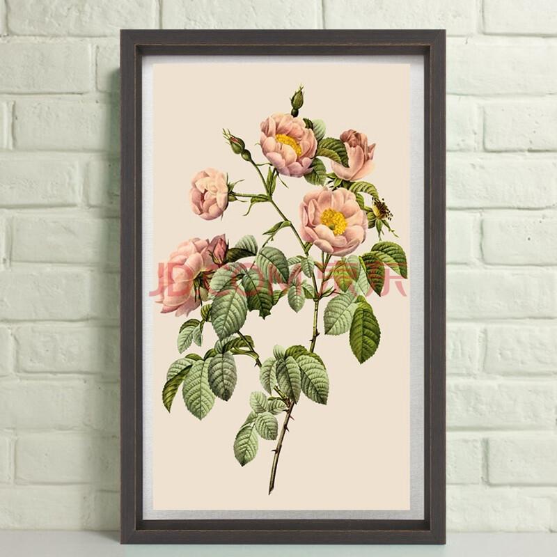 花卉/客厅装饰画卧室床头画餐厅壁画欧式画