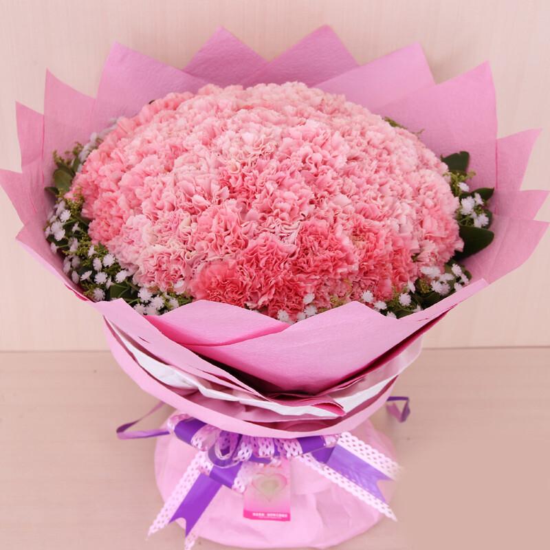 粉色康乃馨花束图片