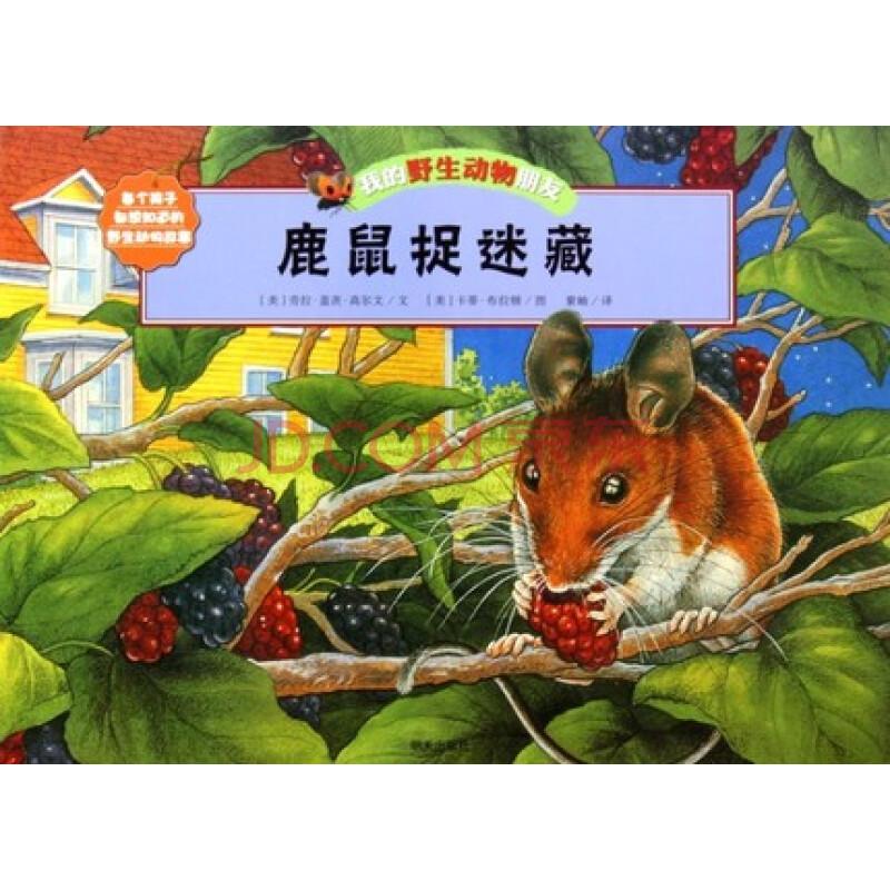 童书 绘本 【我的野生动物朋友】鹿鼠捉迷藏 正版畅销 儿童动物知识