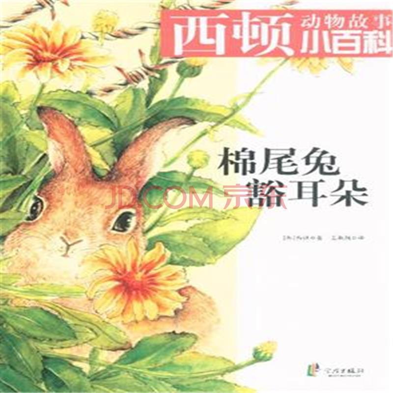 棉尾兔豁耳朵-西顿动物故事小百科