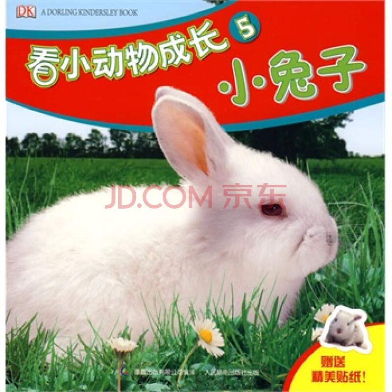 zs106 看小动物成长5:小兔子