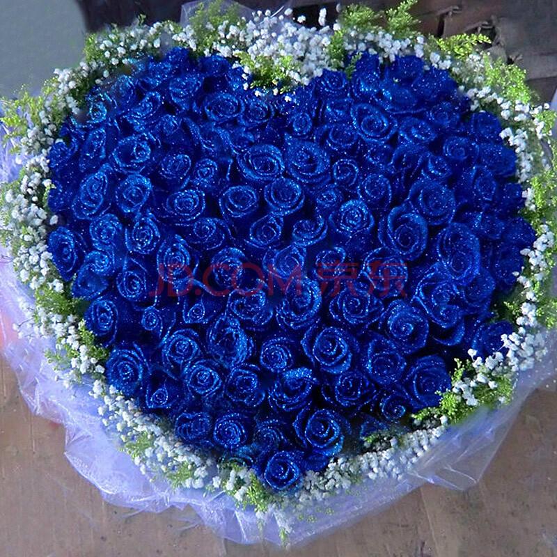 尚雅鲜花 蓝玫瑰花束 蓝色妖姬 99朵蓝色妖姬圆形包装 鲜花速递 生日图片