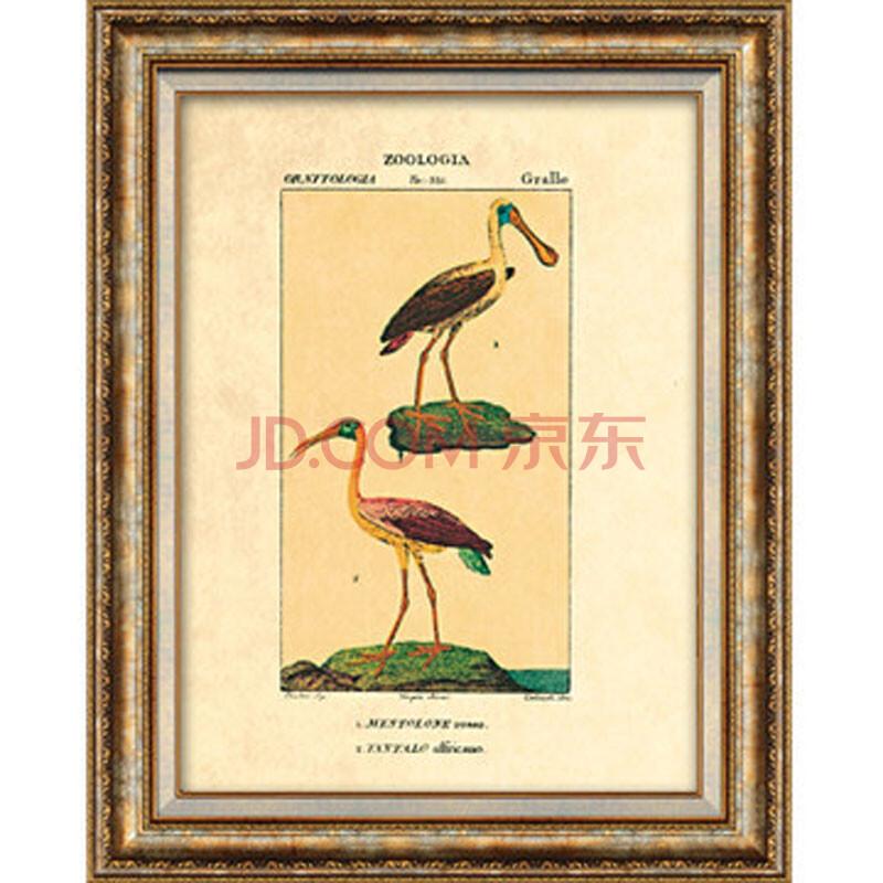 尚尚木莲美式装饰画现代客厅背景墙卧室餐厅有框挂画组合动物d236 第3