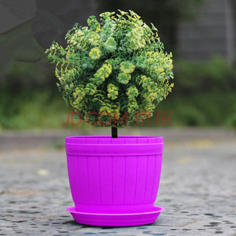 多肉植物盆栽花卉花盆 含底盘绿植风信子 仿木桶花盆--紫色 特小