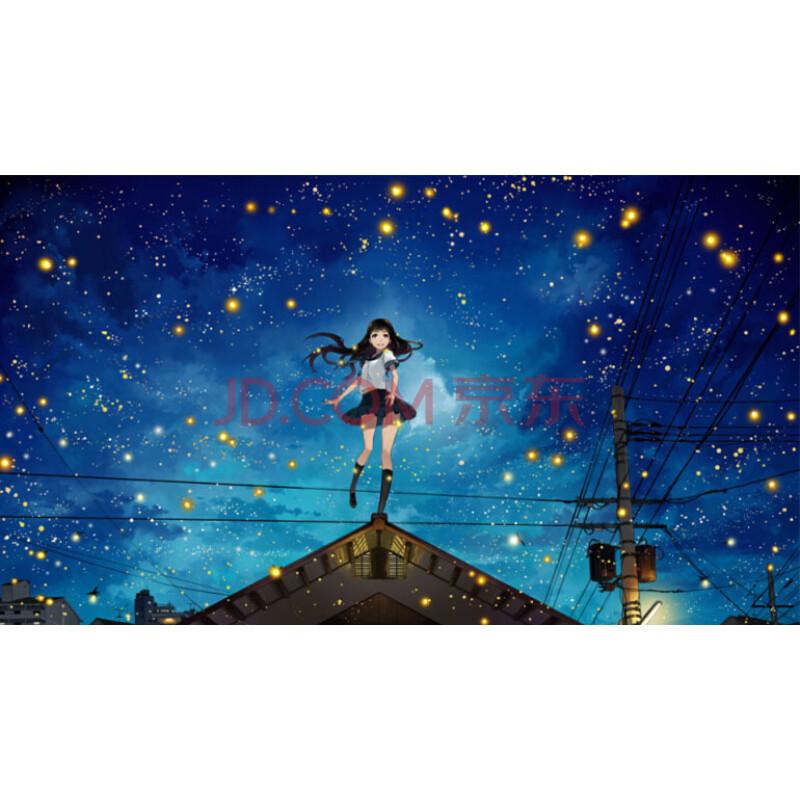 少女手绘卡通动漫画唯美星空 星空下的女孩 1000片木质不分区