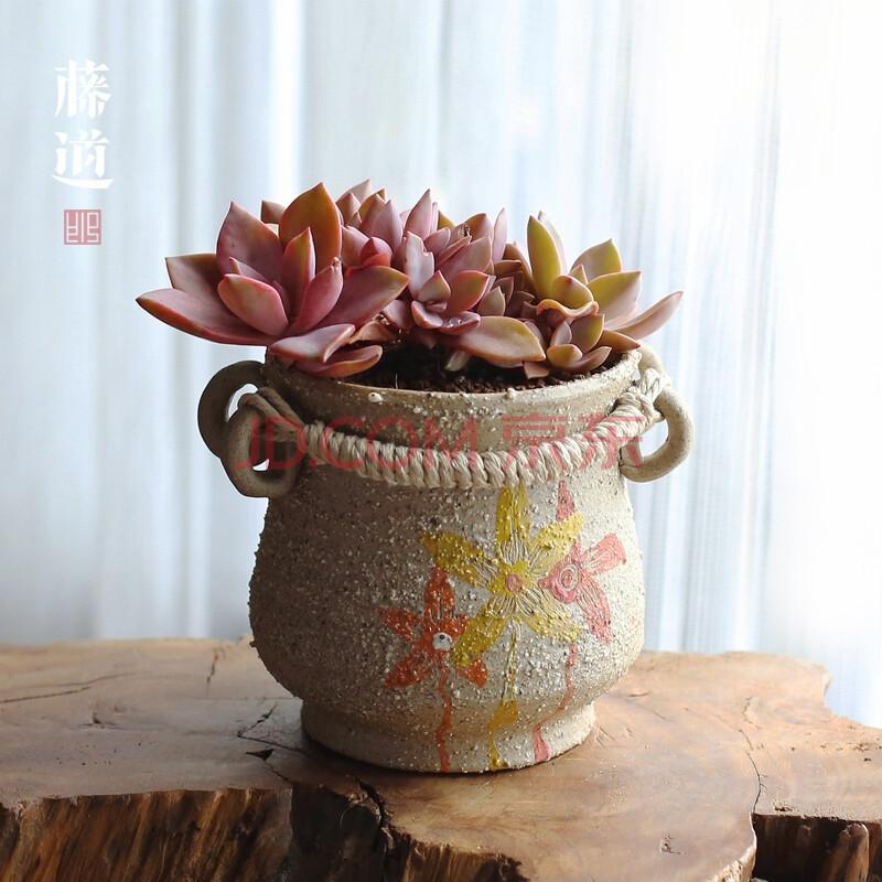 拉胚紫砂粗陶瓷多肉植物花盆手绘办公室绿植物装饰 景德镇小花粗陶盆