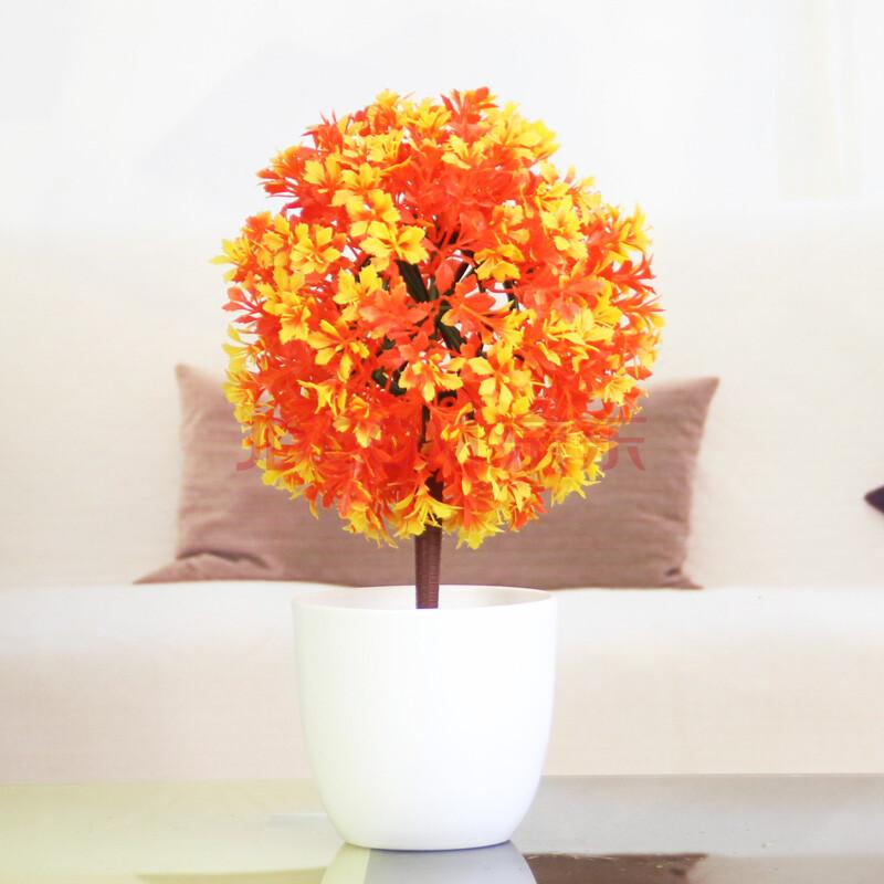 壁纸 花 花束 盆景 盆栽 鲜花 植物 800_800