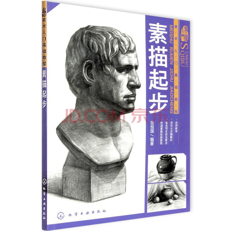 素描起步(美术入门基础教程) 张恒国著 手绘石膏人物头像静物素描基