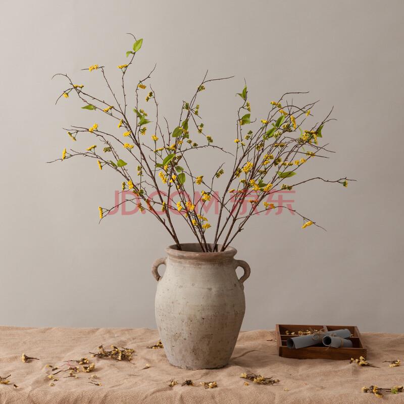 盆景 盆栽 植物 800_800