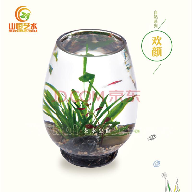 创意水装饰_懒人鱼缸水生态景观创意礼品活水草办公 ...