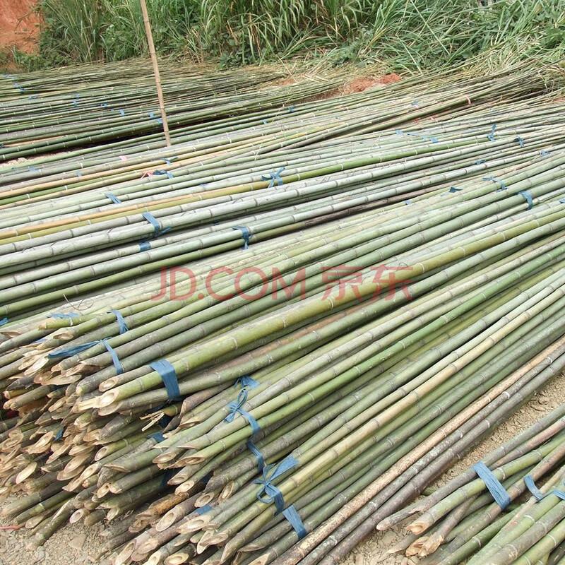 菜园搭架竹子篱笆竹围栏竹栅栏 篱笆竹围栏竹子 10公分2米长