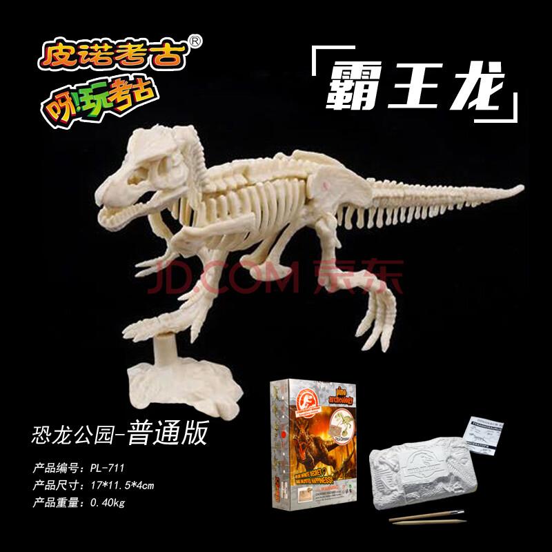 幼儿纸箱制作的恐龙化石手工