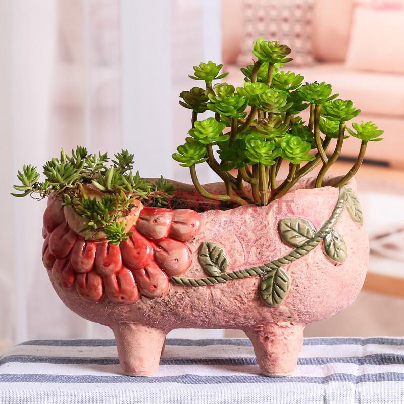 创意摆件 陶罐手绘多肉花盆绿植多肉花盆迷你小花盆园艺陶瓷品q 款式3