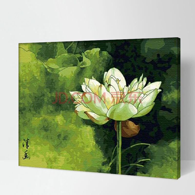 佳彩天颜 diy手绘数字油画 带内框 花卉风景客厅 礼品