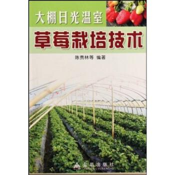 大棚日光温室草莓栽培技术 在线下载