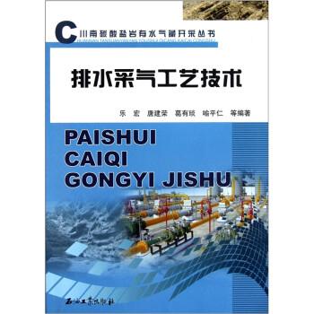 排水采气工艺技术 PDF版下载