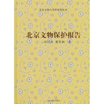 北京文物保护报告 PDF版下载