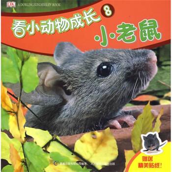 DK看小动物成长小老鼠 [0-2岁] 电子版下载