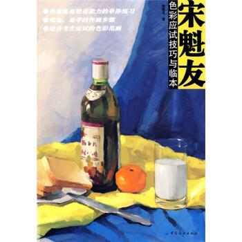 宋魁友:色彩应试技巧与临本 PDF版