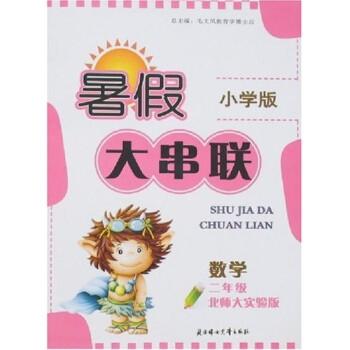 暑假大串联:数学 电子书下载