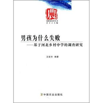 男孩为什么失败:基于河北乡村中学的调查研究 PDF版下载