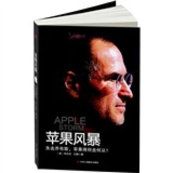 苹果风暴 电子书