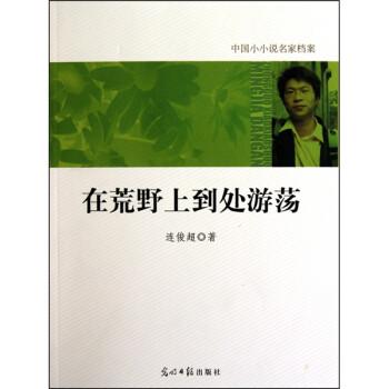 中国小小说名家档案·在荒野上到处游荡 电子版