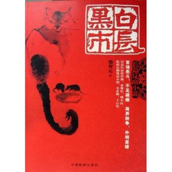 长篇反腐小说:黑白市长 PDF版下载