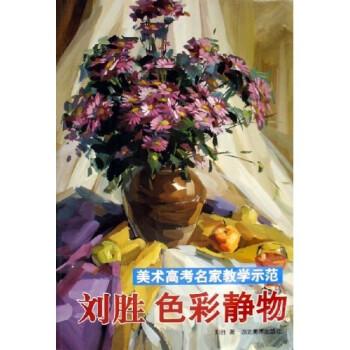 美术高考名家教学示范:刘胜色彩静物1 电子版下载