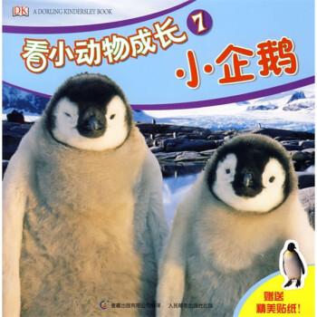 DK看小动物成长小企鹅 [0-2岁] 电子版