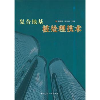 复合地基桩处理技术 电子书