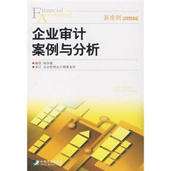 企业审计案例与分析 电子版