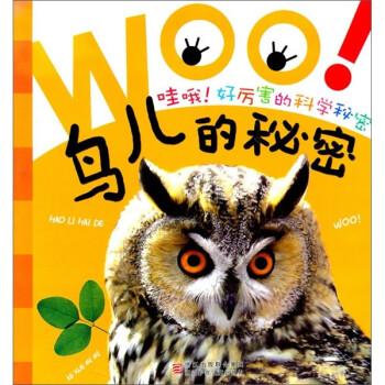 哇哦好厉害的科学秘密:鸟儿的秘密 [3-6岁] 试读
