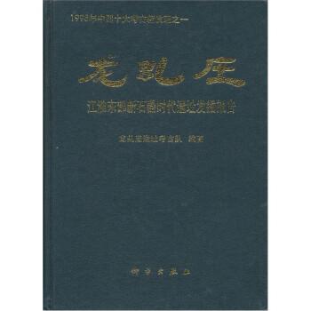 龙虬庄:江淮东部新石器时代遗址发掘报告 电子书