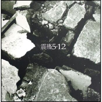 震殇5·12:崔益军汶川大地震摄影纪实 电子书下载