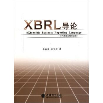 XBRL导论:可扩展商业报告语言 PDF电子版