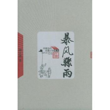 当代长篇小说藏本:暴风骤雨 PDF电子版