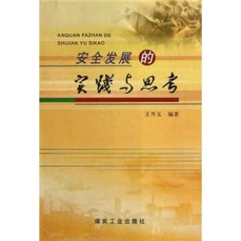 安全发展的实践与思考 电子书