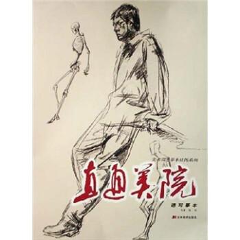美术高考摹本挂图系列:直通美院 电子书