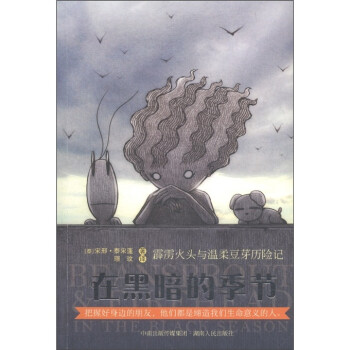 霹雳火头与温柔豆芽历险记:在黑暗的季节 [7-10岁] PDF电子版