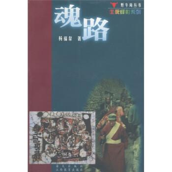 野牛角丛书·生列绎影系列:魂路 在线阅读