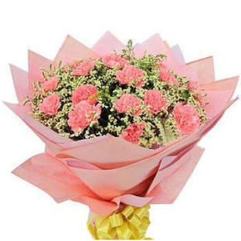 鲜花 粉康乃馨花束19枝 关爱妈妈 妈妈生日礼物
